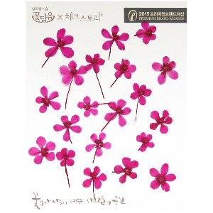 압화/줄기꽃 수채화줄기 - 핑크(20개)