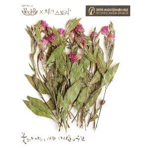 압화/줄기꽃 야생줄기 - 핑크(10개)