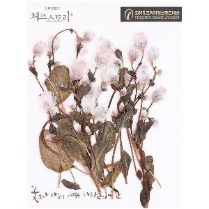 압화/줄기꽃 로단세봉우리줄기 - 핑크(20개)