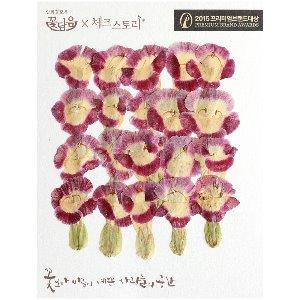 압화/줄기꽃 패랭이(토레니아) - 와인(20개)