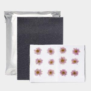 압화건조매트(수입) - 중(6장) 압화말리기 꽃말리기