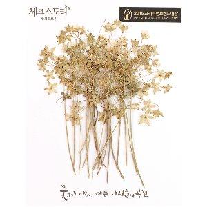 압화/줄기꽃 봄맞이꽃줄기 - (20개)